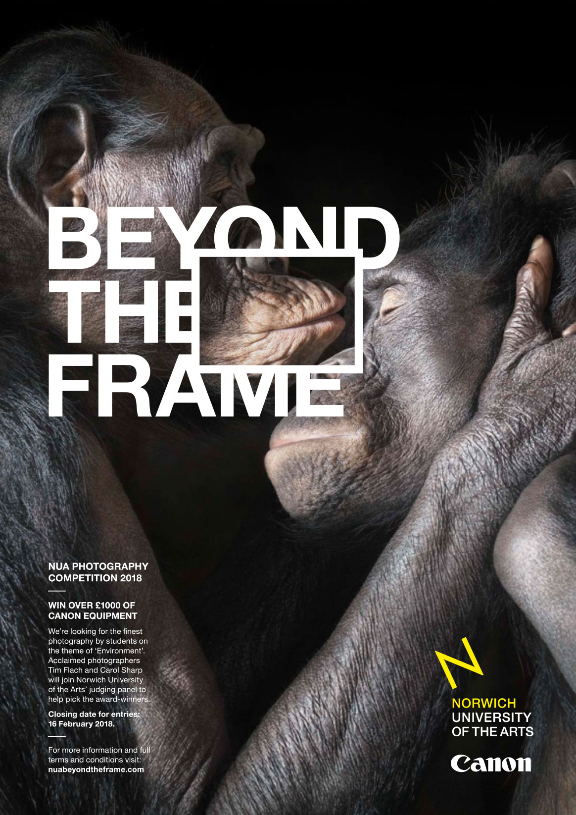 Beyond the Frame poster